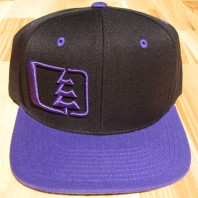 Northwest Riders Snapback Hat (black/purple)